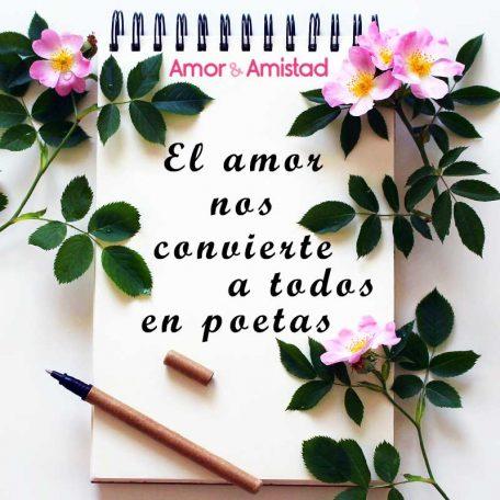 imagen-amor-frase-flores