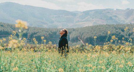 80 Frases de la Vida para Reflexionar
